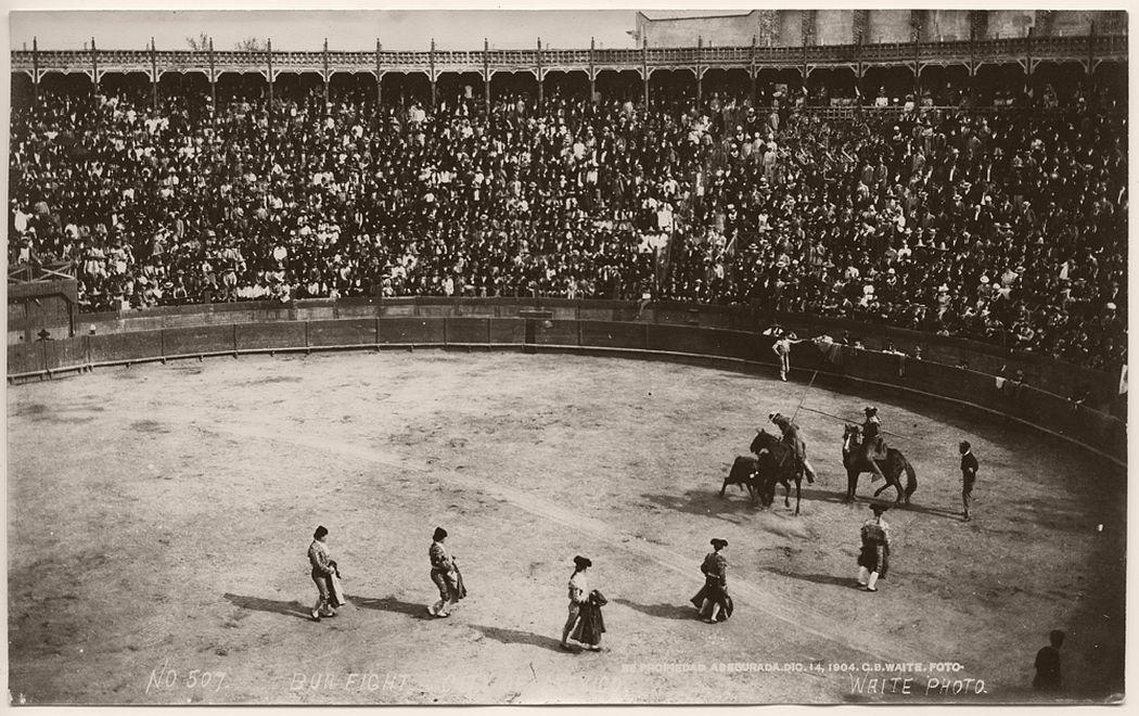 Bull fight, City of Mexico, 1904