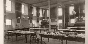 Vintage: Historical Photos of Harvard University (19th Century)
