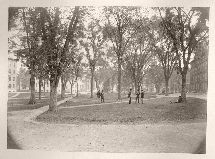 Students in Harvard Yard, 1864-74