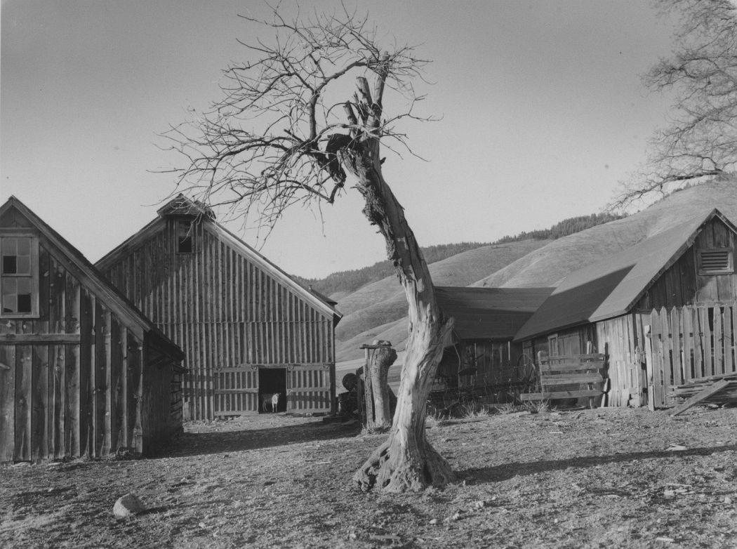 Minor White, Happy Farmyard, Grande Ronde Valley, Oregon, 1941