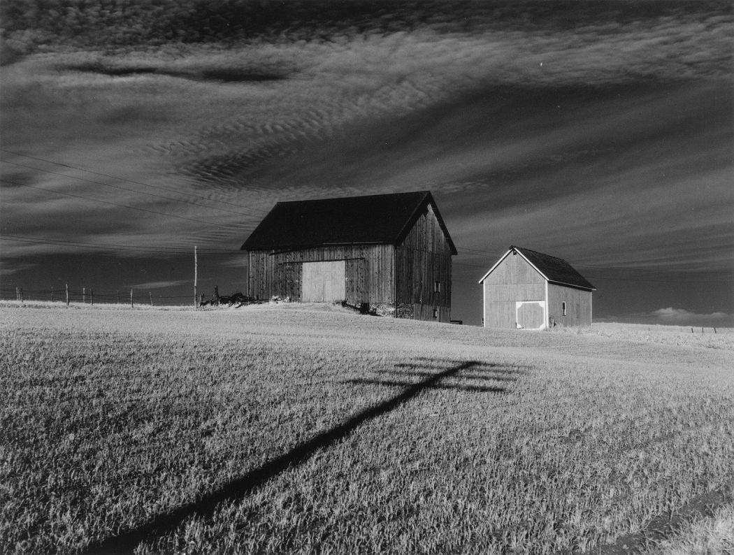 Minor White, Two Barns and Shadow, 1955