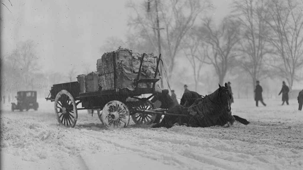 Circa February 1920. Horse pulling wagon slips in snow next to Common.