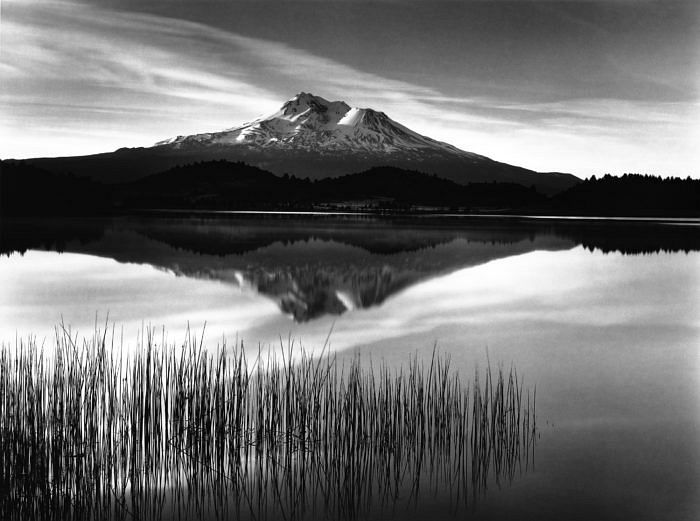Tule and Mount Shasta © Roman Loranc