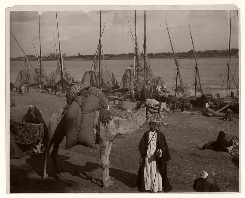 Ancient transportation, Nile, Egypt