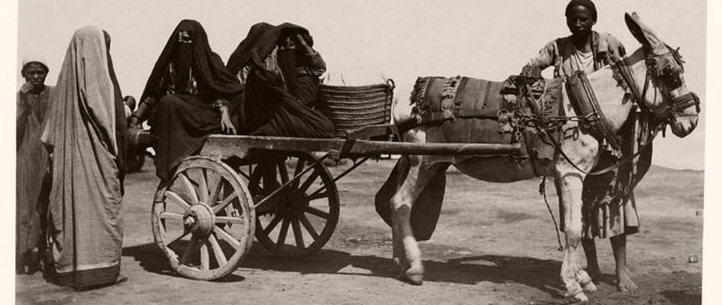 Vintage: Everyday Life of Egypt (late 19th Century)