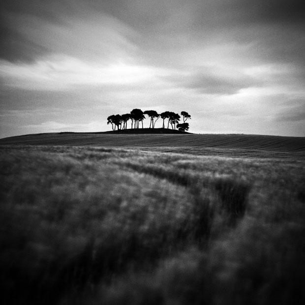 Neverland Scotland, 2017