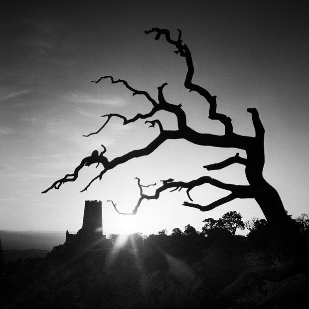 Conquista Grand Canyon, 2014