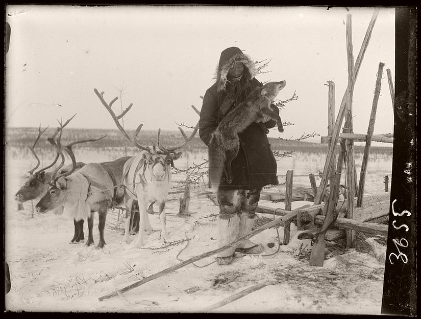 Vintage: Everyday Life of Siberia (1900s)
