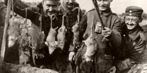 Vintage: Trench Rats Killed by Terriers During World War I