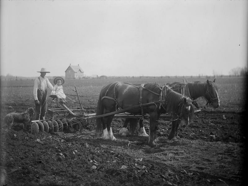Robert Brebner with son with plow team