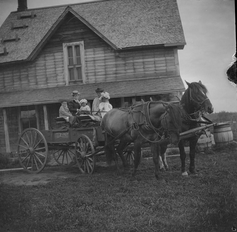 Brebner family on a horse-drawn wagon