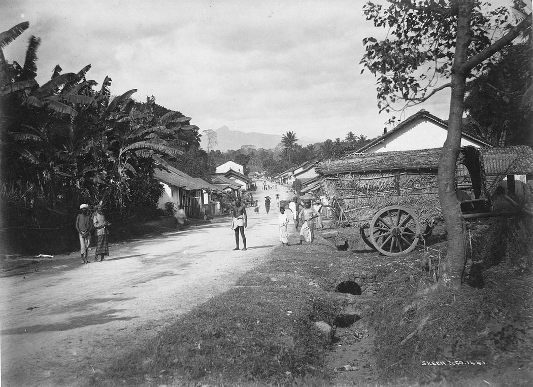Village, Colombo, Ceylon, ca. 1880s