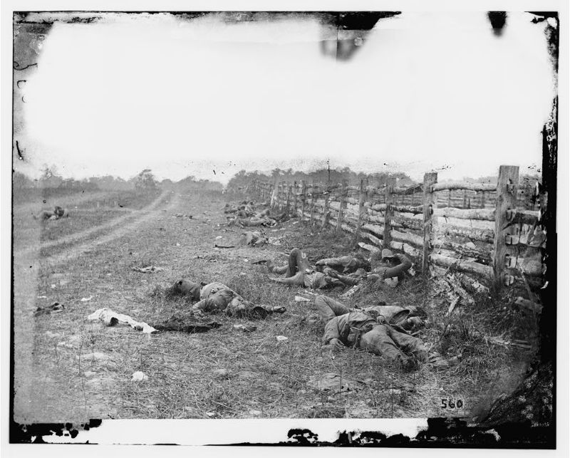 Confederate dead along Hagerstown Pike