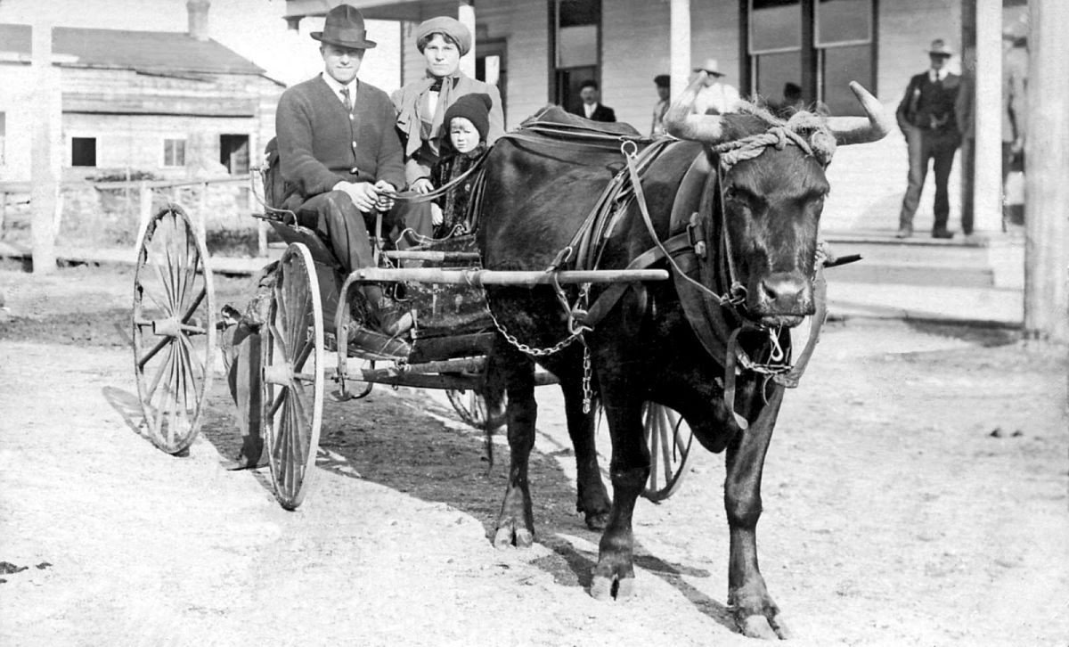 Family in a carriage, Humboldt, Saskatchewan