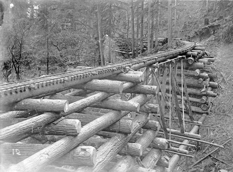 Log bridge (crib trestle) on the Columbia and Nehalem Valley Railroad, Columbia County, Oregon.
