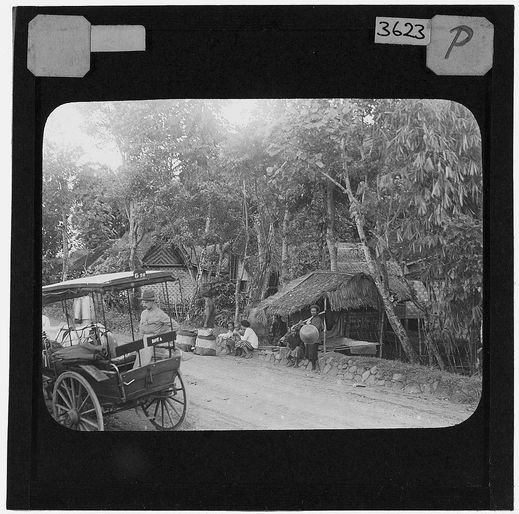 Roadside view Papandayang, Java (1913)