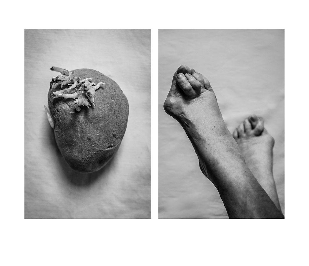 © Alicja Brodowicz: Visual Exercises