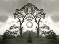Jerry Uelsmann: NOW