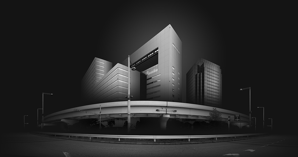 © Naoki Fujihara