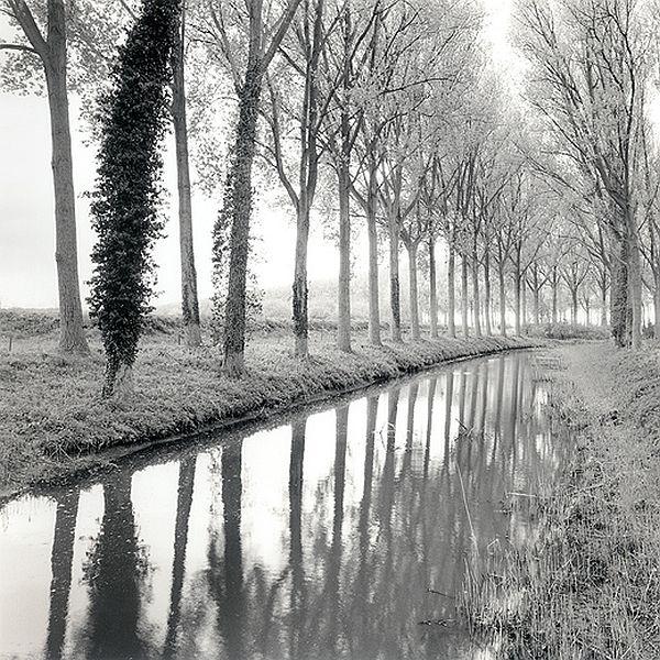Canal Damme, Belgium, 2017