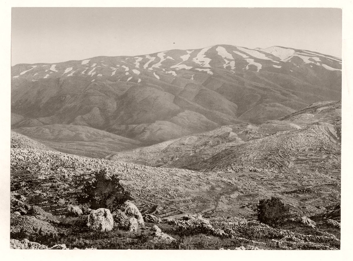 General view, Mount Hermon, Holy Land (Lebanon and Syria)