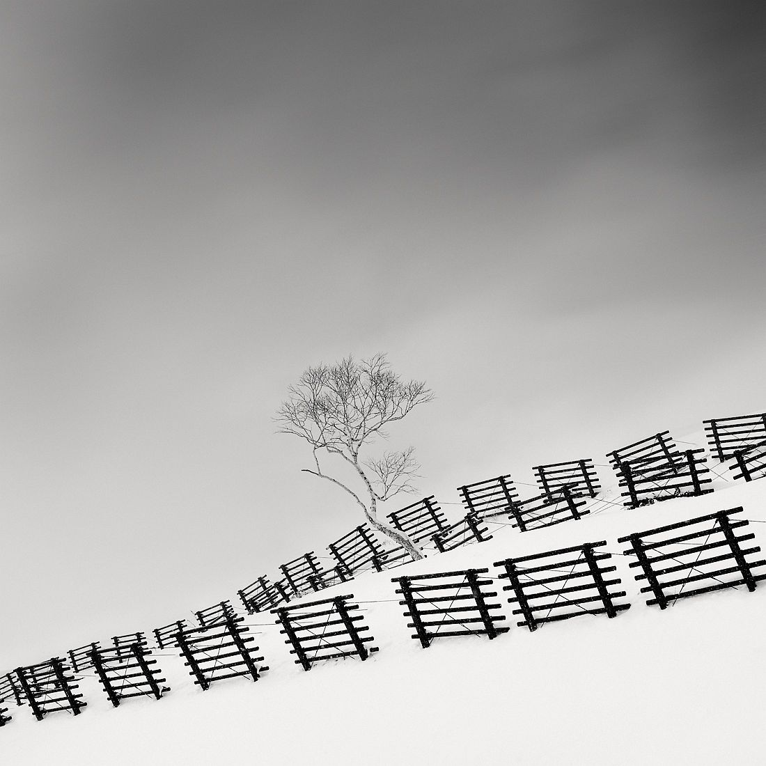 © Olivier Robert : Snow Fences / MonoVisions Photography Awards 2018 winner
