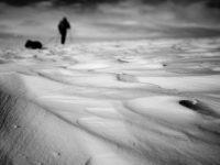 Romain Tornay: White Road