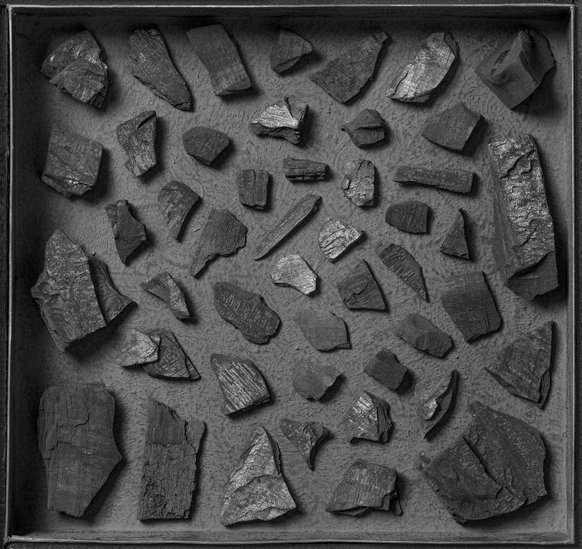 A still-life photograph of an arrangement of pieces of charcoal in a shallow black box.