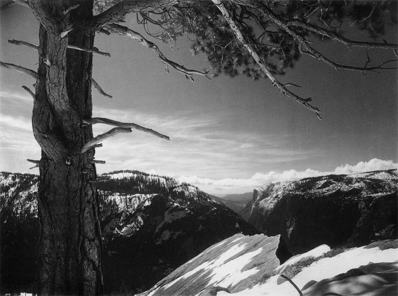On the Heights, Yosemite Valley, 1927