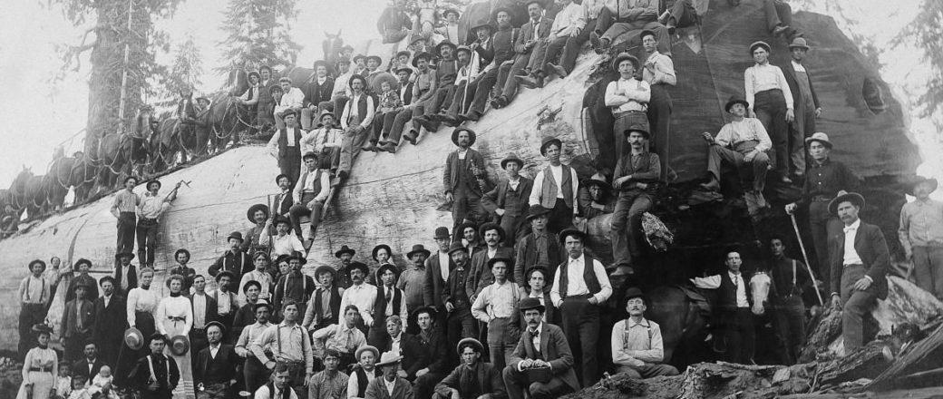 Vintage: Lumberjacks of North America (1900s)