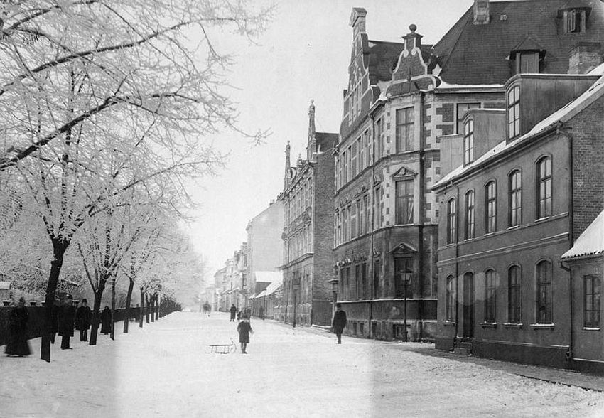 Malmö. The second building to the right is the Elementary School for girls at Slottsgatan street. To the left is Kungsparken (King's Park)