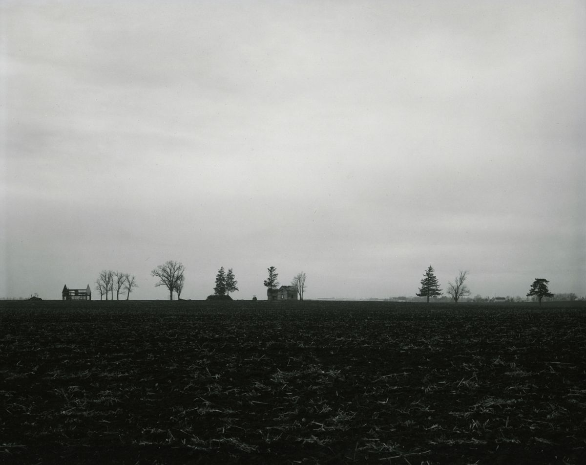 Untitled, from Farm Landscapes, 1981