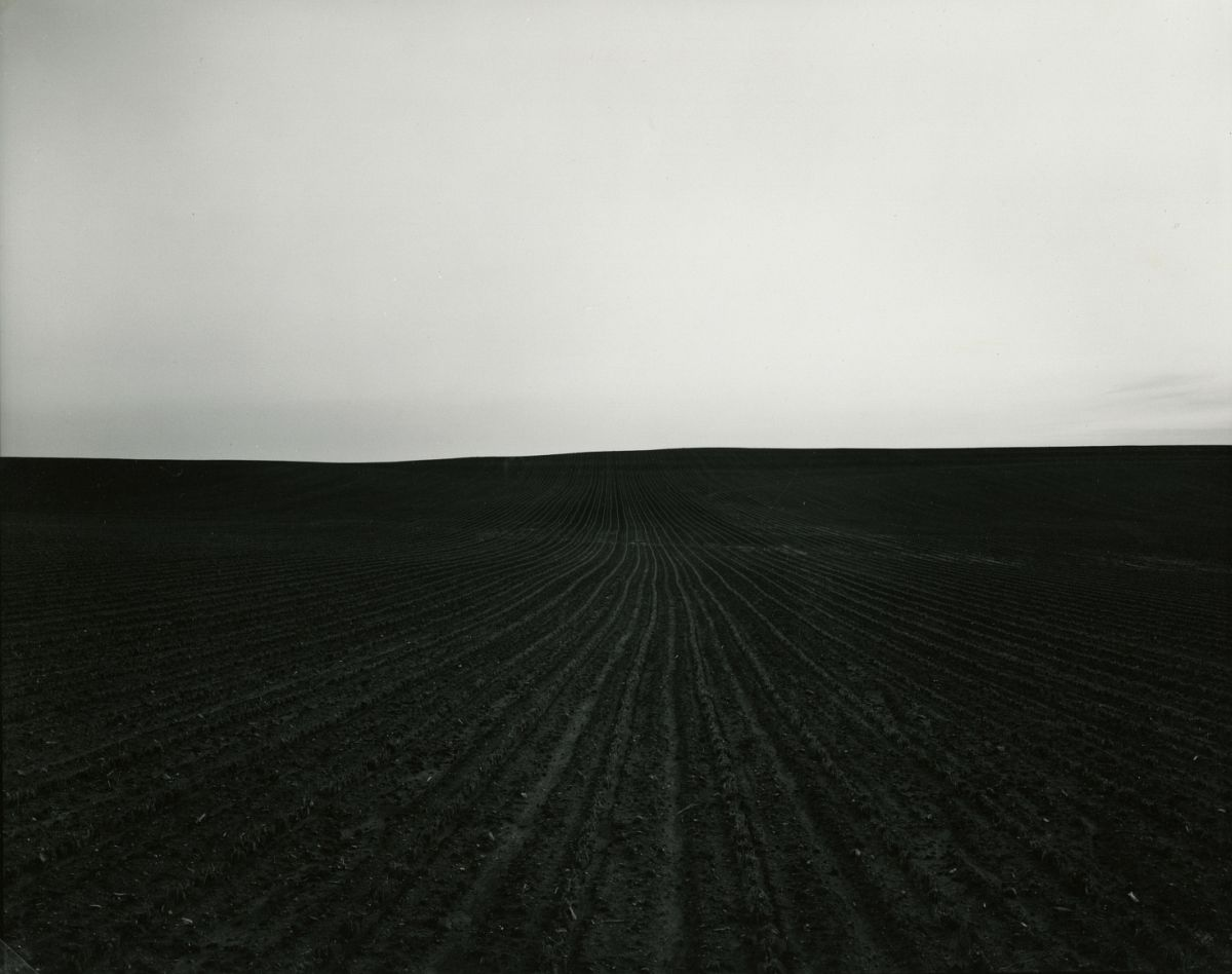 Untitled, from Illinois Landscapes, 1982