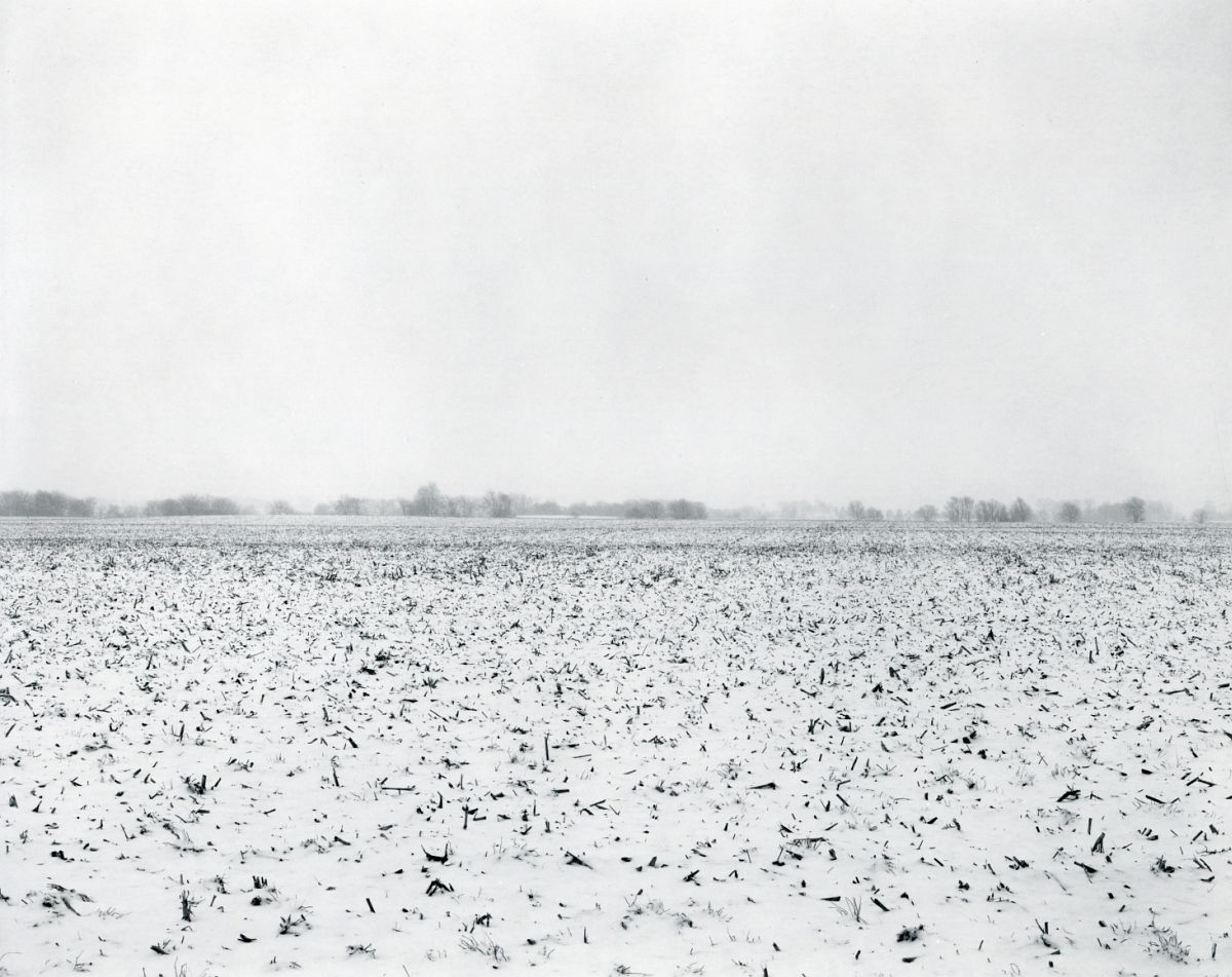 Untitled, from Illinois Landscapes, 2014