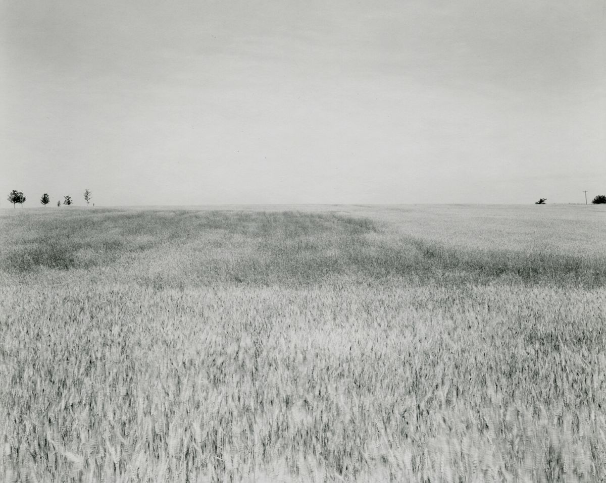 Untitled, from Illinios Landscapes, 1980
