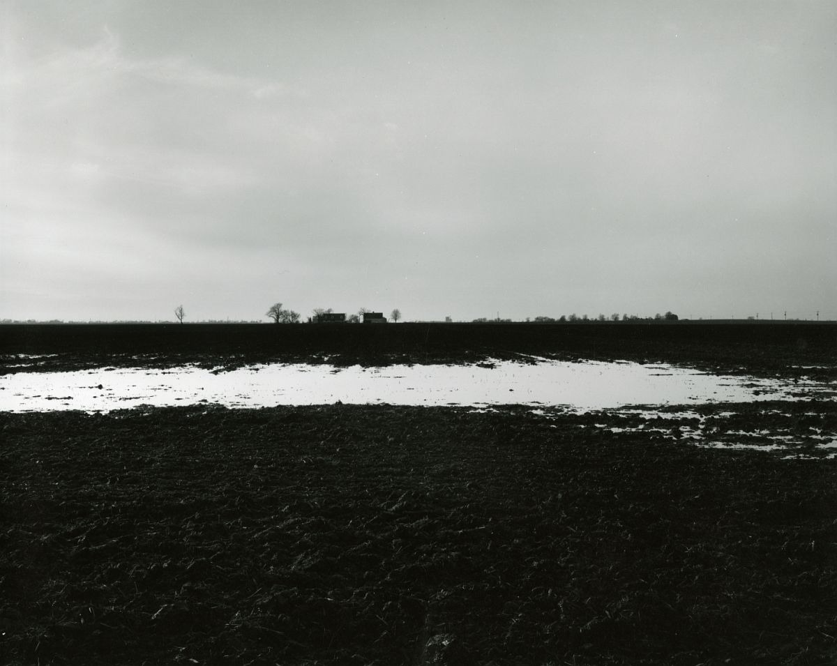 Untitled, from Farm Landscapes, 2005