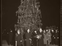 Vintage: Christmas Trees in the past