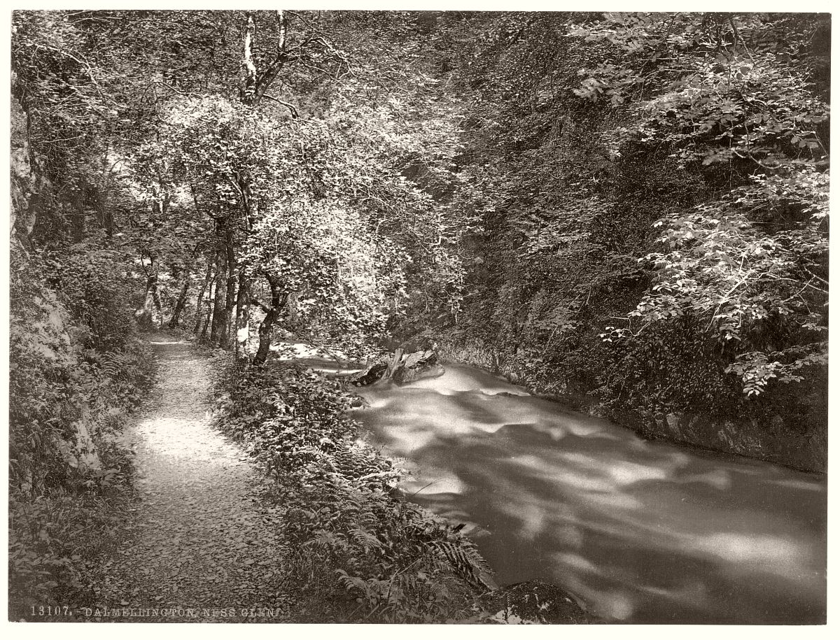 Ness Glen, Dalmellington, Scotland
