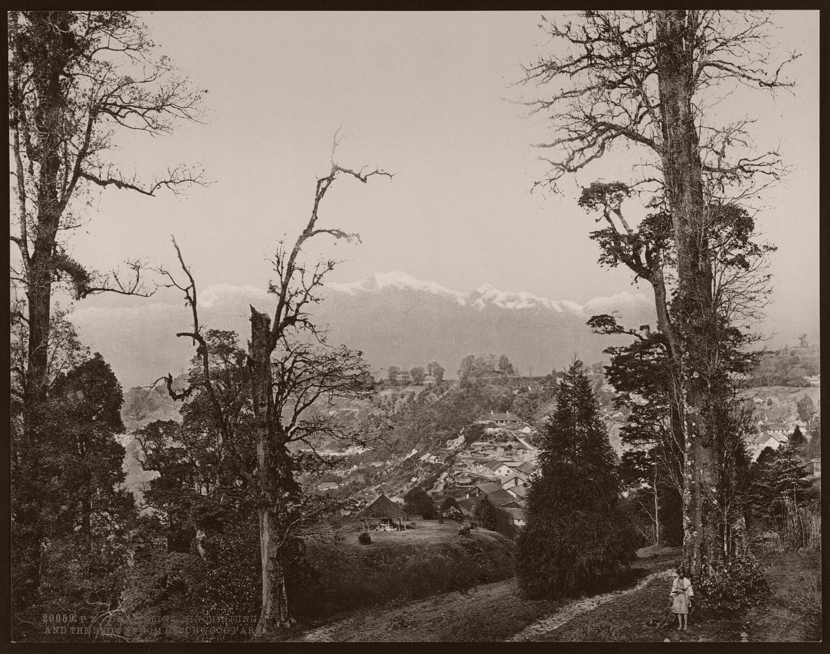 Darjeeling. Kinchinjunga and the snow from Beechwood Park