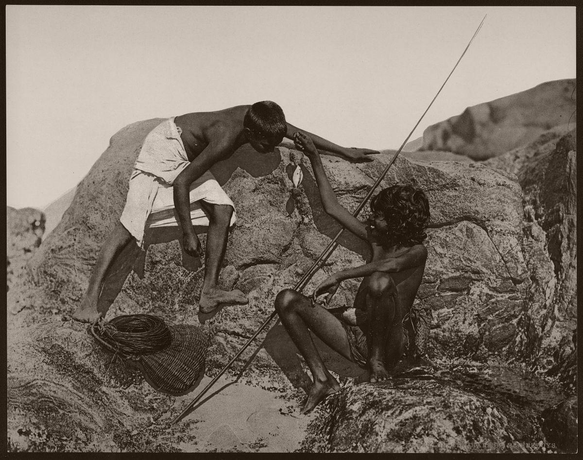 Ceylon. Singhalese-Fisherboys.