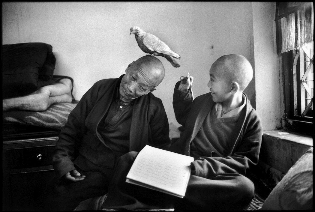 Tulku Khentrul Lodro Rabsel, aged 12, with his tutor Lhagyel, Shechen monastery, Bodnath, Nepal (1966) © Martine Franck / Magnum Photos