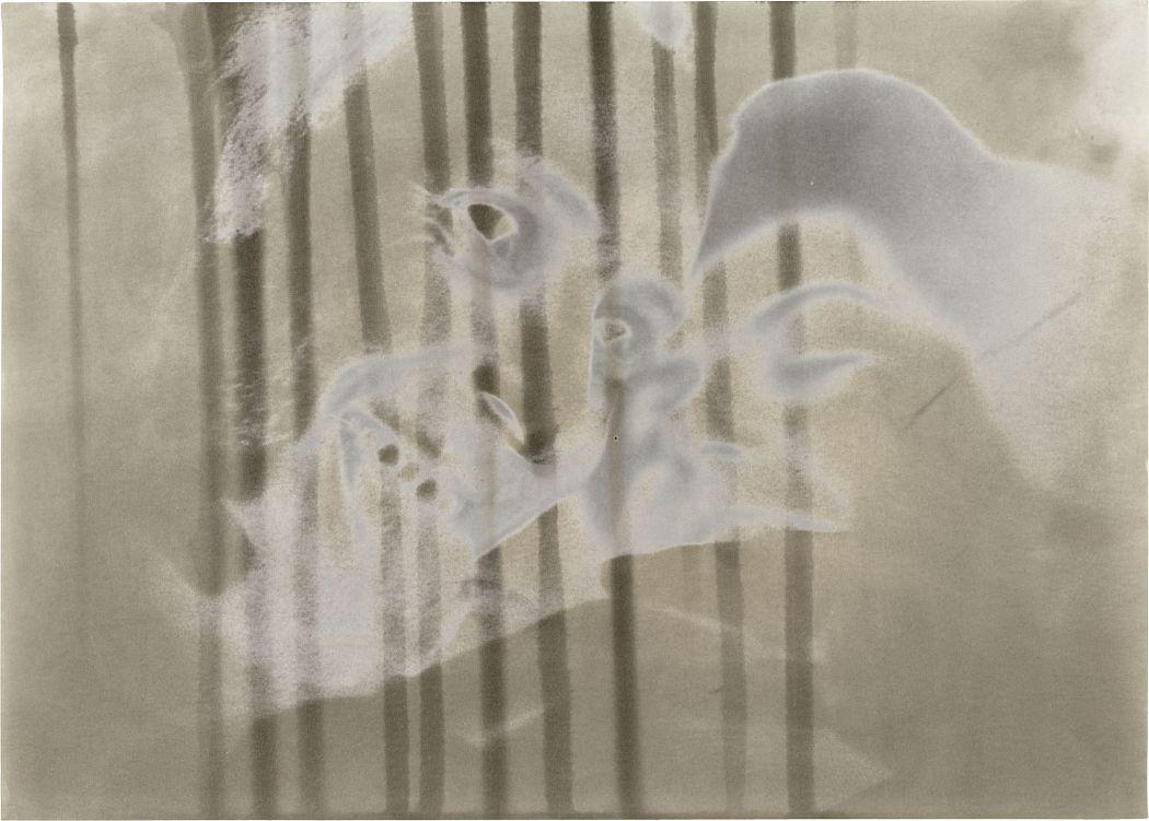 Sigmar Polke, Ohne Titel (à deux III), 1975 Sammlung Lambrecht-Schadeberg / Rubenspreisträger der Stadt Siegen © The Estate of Sigmar Polke / VG Bild-Kunst, Bonn 2018
