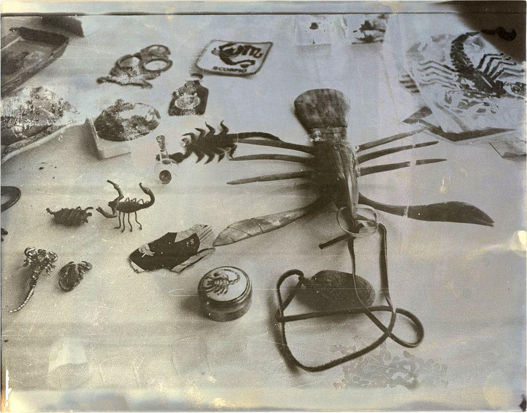 Sigmar Polke, Ohne Titel (Skorpione), 1975 Fotografie Sammlung Lambrecht-Schadeberg/ Rubenspreisträger der Stadt Siegen © 2018 The Estate of Sigmar Polke / VG Bild-Kunst, Bonn