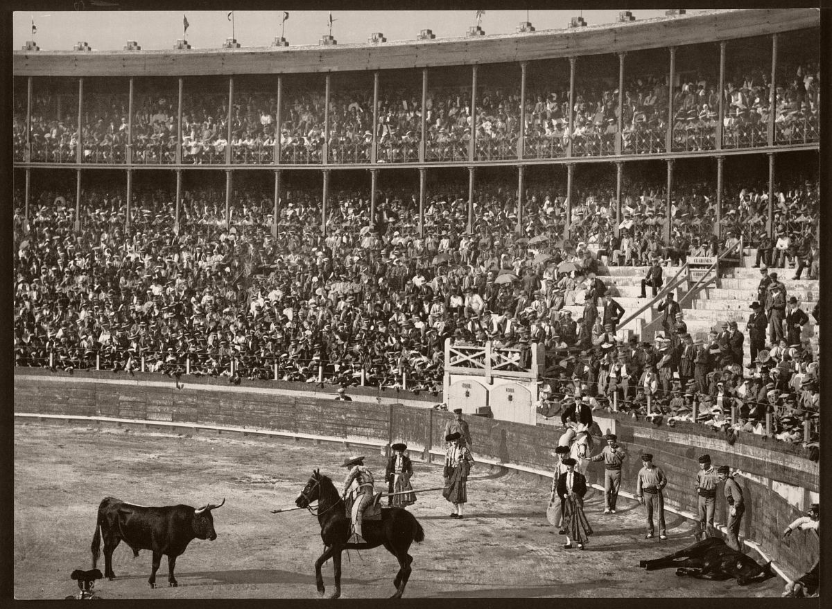 A bull fight, Barcelona, Spain