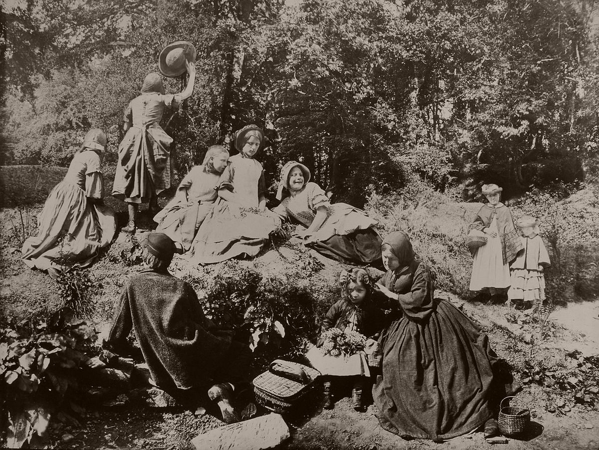 A Holiday in the Wood, 1860