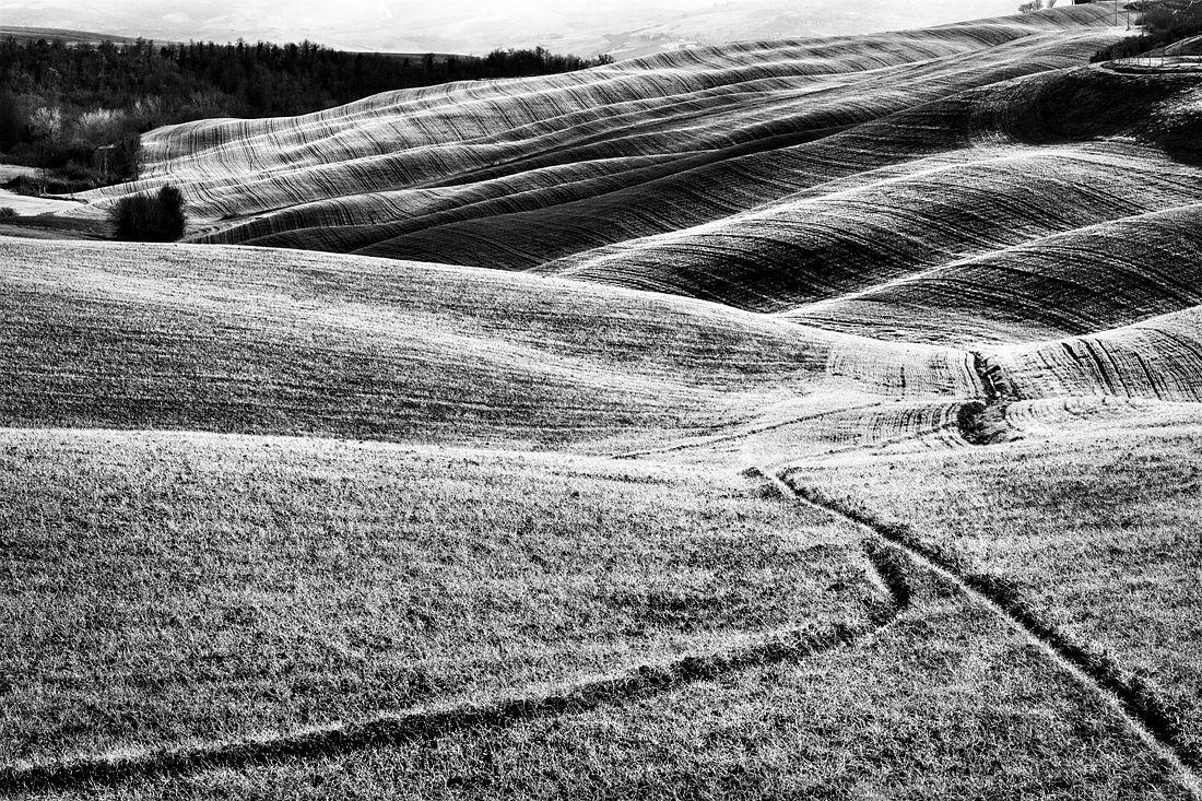 © Stefano Ciol: Grafismi Rurali - Rural Graphysms / MonoVisions Photography Awards 2018 winner