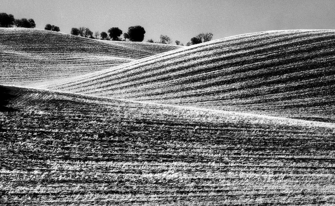 © Stefano Ciol: Grafismi Rurali - Rural Graphysms / MonoVisions Photography Awards 2018 winner