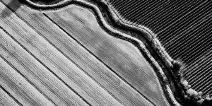 Stefano Ciol: Rural Graphysms