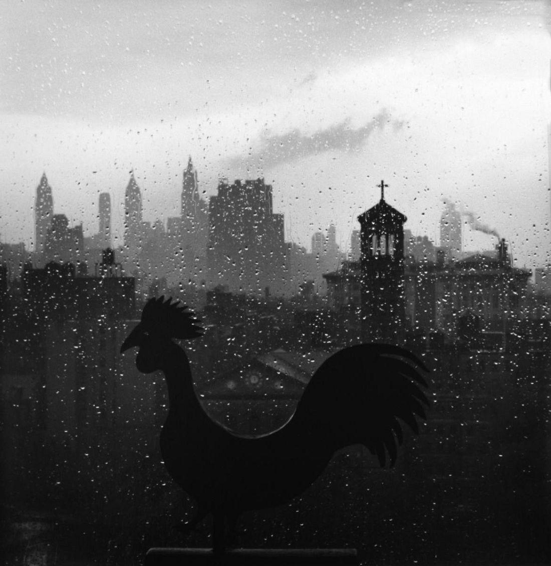 Weather Vane and New York Skyline, September 19, 1952