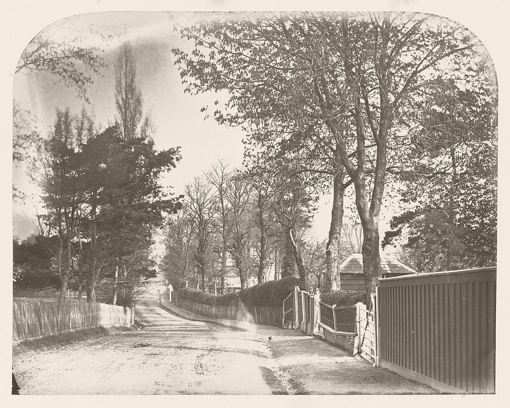 A photograph by George Shadbolt, entitled Country Lane, likely to have been taken in the area of Hornsey, North London.